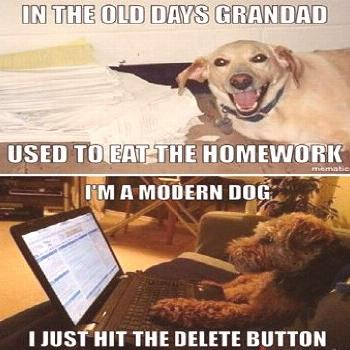 5 Funny Things Dogs Do When Left Alone At Home These extra-wholesome dog memes are giving us new li