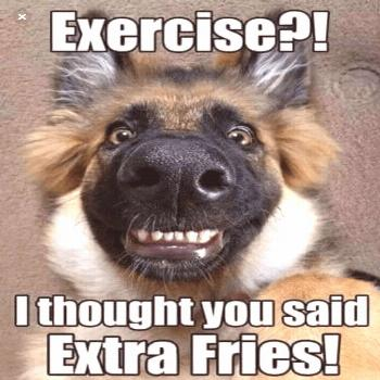 Exercise?! I thought you said Extra Fries! | A funny dog❤ | Funny dog memes
