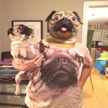 We would give so much to know what's going through the mind of this pug. Or maybe not. It looks h
